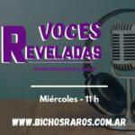 Voces Reveladas -Micro 7- Militancias feministas de la región